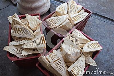 Brotes de bambú