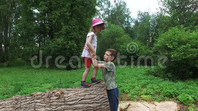 Brother helps sister. Boy teenager drags the the girl child with wooden logs on the ground. Dry cut down sick trees lying on the ground. Summer park with big stock footage