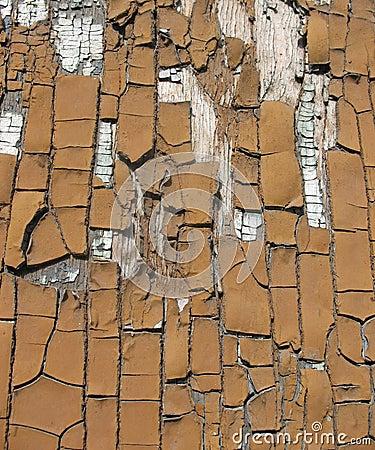Broun wooden door with old paint