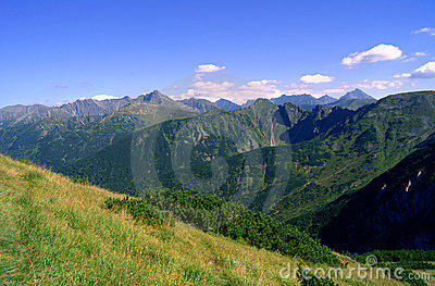 Brow in Tatras mountains