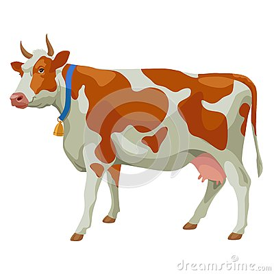 Free Brown And White Cow, Side View, Isolated Stock Photo - 42217670