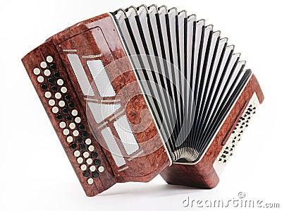 Brown bayan (accordion)