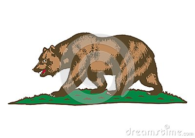 Brown bear on grass Stock Photo