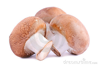 Brown champignons