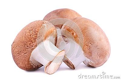 Brown champignons