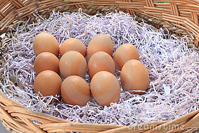 Brown chicken eggs lay on the wooden basket
