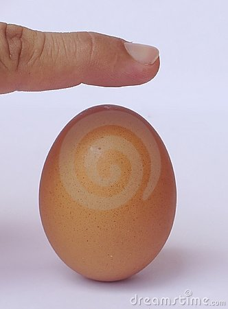 Brown egg in equilibrium
