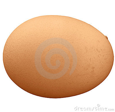 Brown egg isolated
