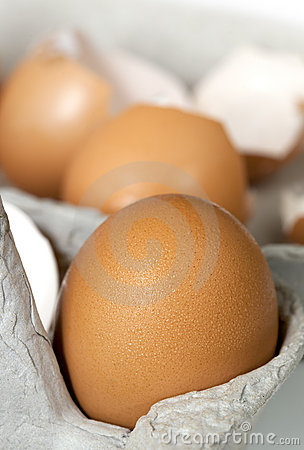 Brown Eggs in Carton