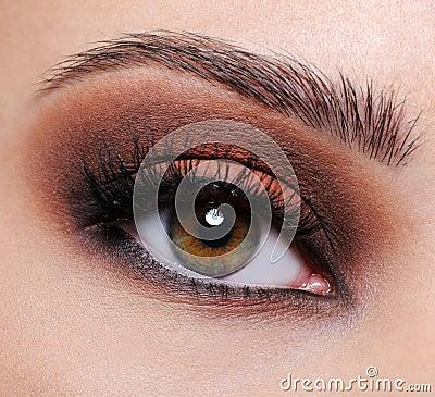 Free Brown Eye Make-up Royalty Free Stock Image - 11294156