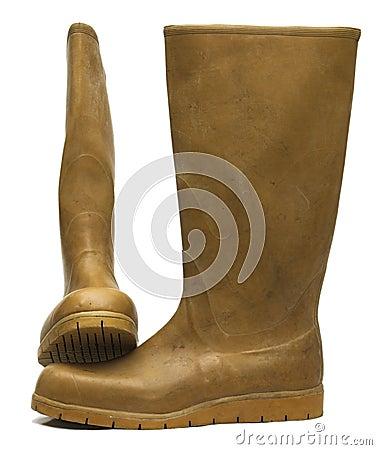 Free Brown Gums Stock Photos - 2426653