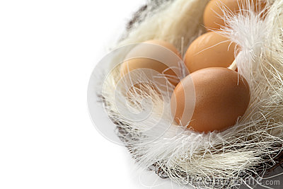 Brown jajka w koszu