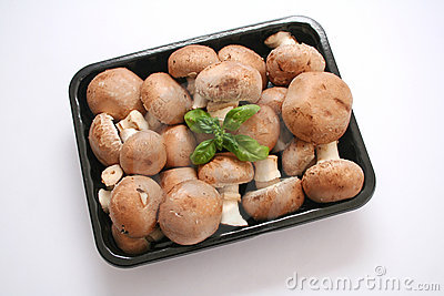 Brown mushrooms