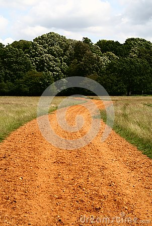 Royalty Free Stock Images: Brown path