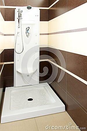 Brown shower 2