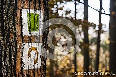 Brown Tree Free Public Domain Cc0 Image
