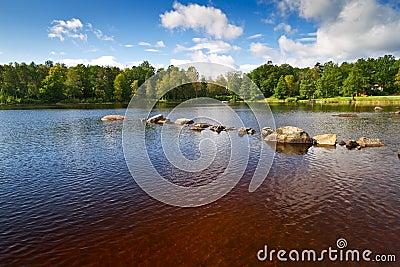 Brown water lake in Kyrkhult