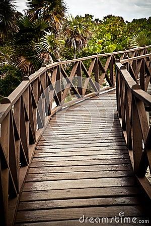 Brown Wood Bridge