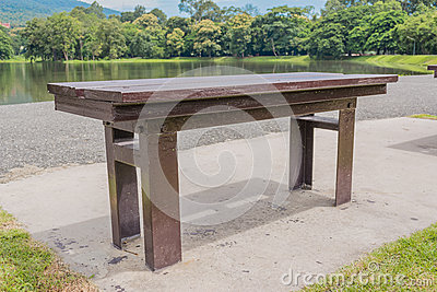 brown wooden bench at a green lake