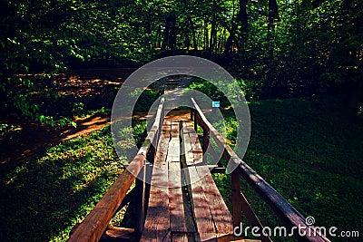 Brown Wooden Bridge Near Forest During Golden Hour Free Public Domain Cc0 Image