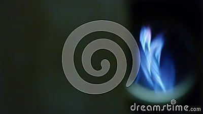 Bruciatore del gas naturale - fiamme blu - fornace attiva video d archivio