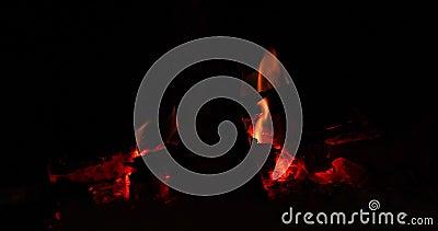 Bruciatura Del Fuoco Nel Buio stock footage
