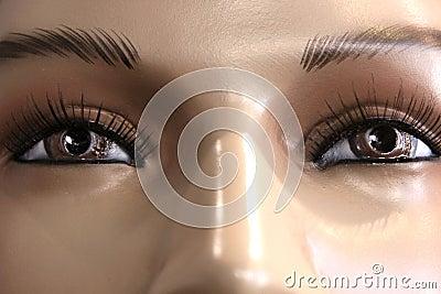 Bruine Eyed Starende blik