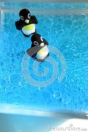 Bruisende Pinguïnen