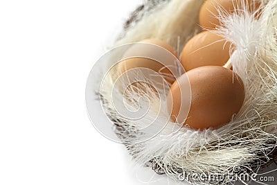 Bruna ägg i korgen