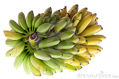 Brunch of bananas