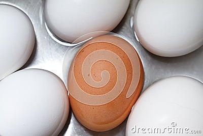 Brunt ägg