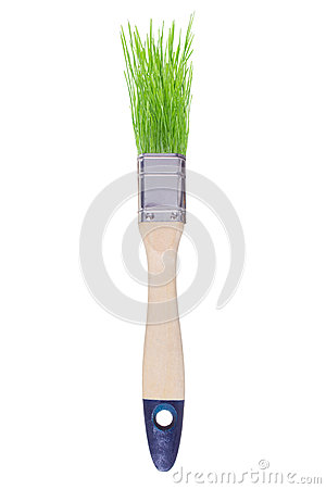 Brush with green grass