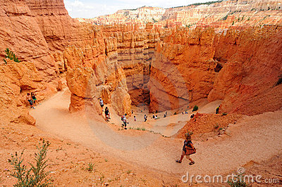 Bryce Canyon National Park, Utah Editorial Photography