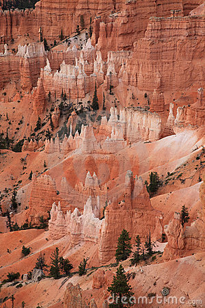 Free Bryce Canyon NP Stock Photography - 11455852