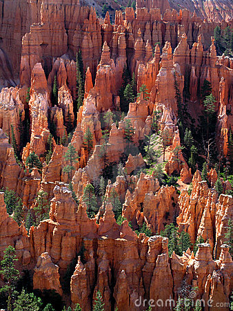 Free Bryce Canyon Summer Royalty Free Stock Photos - 1353788