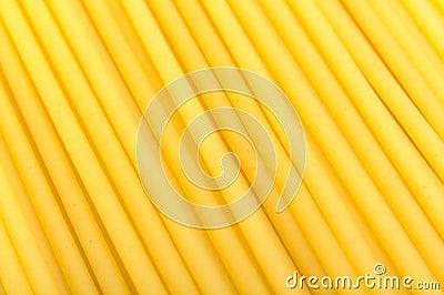 Bucatini Pasta Close-Up