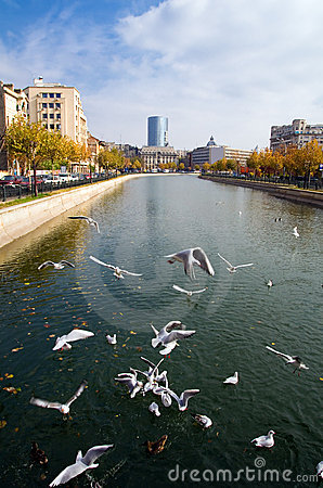 Bucharest - Autumn view