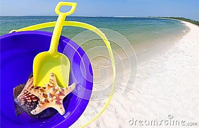 Bucket and Shells