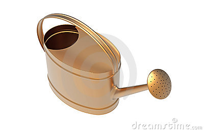 Bucket for watering