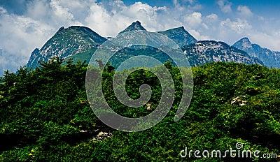 The Buckhorn Ridge of Qinling Mountain