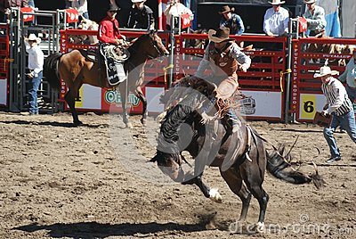 Bucking Horse Cowboy Editorial Photo