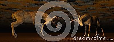 Bucks fighting - 3D render