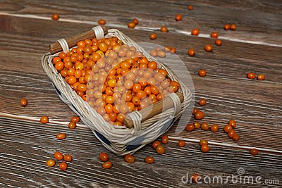 Buckthorn in the basket
