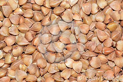 Image result for buckwheat seeds