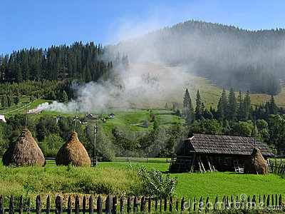 Bucovina dream