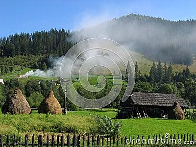 Bucovina dream