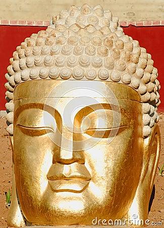 Buda face
