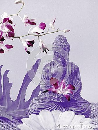 Free Buddha Altar Royalty Free Stock Images - 2126829