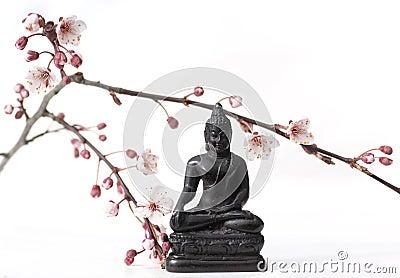 Buddha and buds