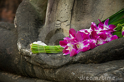 Buddha in meditation position, Orchids